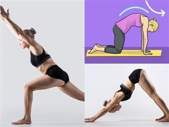 Những bài tập yoga giúp giảm căng thẳng nhanh chóng và tăng cường sức khỏe cho phụ nữ U30