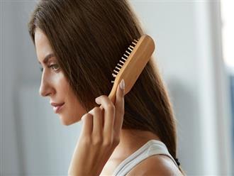 Những biện pháp đơn giản giúp ngăn ngừa tóc hư tổn vào mùa đông