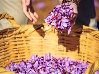 Nhụy hoa nghệ tây, 'thần dược' trong việc dưỡng nhan sắc