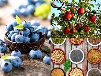 Quẳng gánh lo ngày Tết đi bằng 7 loại thực phẩm thần kì giúp bạn xua tan mệt mỏi, tỉnh táo cả ngày