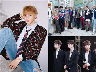 Sau khi tan rã, các thành viên Wanna One sẽ đi đâu về đâu?
