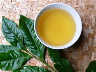 3 kiểu uống nước chè hại gan, phá thận thậm chí gây ung thư, 99% người Việt đều mắc