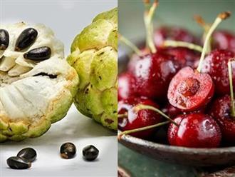 5 loại quả ngon ai cũng ăn nhưng hạt của nó lại rất độc tuyệt đối không được nuốt