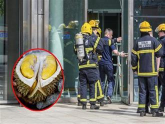 """Bưu kiện có mùi lạ, tòa nhà bưu điện tưởng bị đánh bom phải sơ tán huy động cả cứu hỏa và cứu thương nhưng cuối cùng chưng hửng vì """"thủ phạm"""""""