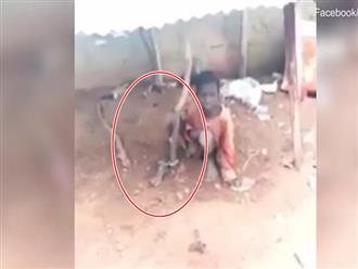 Xót xa clip bé trai bị xích trong chuồng gà, ăn thức ăn của dê qua ngày trong khi bố ở với 3 vợ