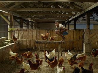 """""""Cậu bé gà"""": Chàng trai bị nhốt trong chuồng gà đến nỗi quên cách sống như con người và 22 năm bị cầm tù trên giường như động vật"""