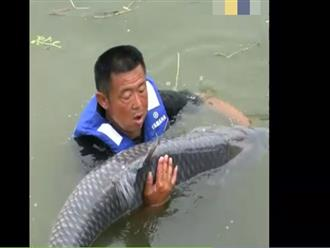 Đi câu cho vui, người đàn ông bắt được cá chép 'khổng lồ' nặng gần 1 tạ, nhìn cảnh vật lộn mà kinh hoàng