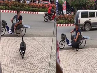 Chú chó thông minh ngậm vé số đi bán giúp chủ ngồi xe lăn, bất ngờ nhất là cái kết