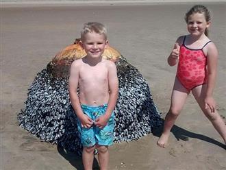 Cho con nô đùa chụp ảnh với vật thể lạ trên bãi biển, vài ngày sau cặp vợ chồng thót tim phát hiện sự thật, 2 đứa trẻ thoát chết thần kỳ