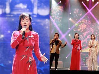 Diva Hồng Nhung xin lỗi khán giả về sự cố trên sân khấu