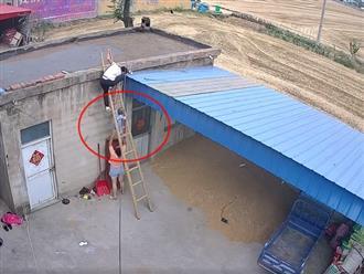 Thót tim cảnh bé trai trèo thang leo mái nhà và phản ứng 'nhanh như chớp' của ông bố trẻ
