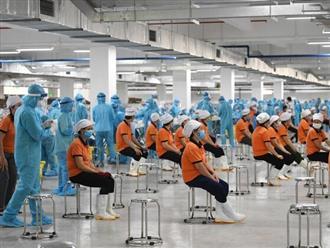 Tiền Giang: Doanh nghiệp sản xuất '3 tại chỗ' phát hiện 180 ca nhiễm COVID-19, dừng hoạt động khẩn cấp
