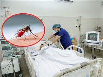 Sai lầm khiến bệnh sốt xuất huyết diễn biễn nguy hiểm, bác sĩ cảnh báo khi có dấu hiệu này cần đi khám ngay