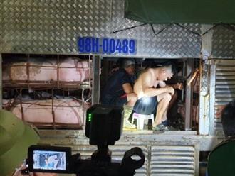Kiểm tra xe chở đầy lợn qua chốt kiểm soát dịch trong đêm, phát hiện nhóm người trốn bên trong