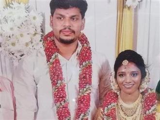 Bản án thích đáng cho người chồng hai lần dùng rắn độc sát hại vợ