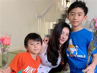 Bố Tạ Đình Phong lập di chúc để lại toàn bộ tài sản cho con dâu cũ Trương Bá Chi?