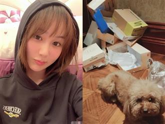 Chỉ bằng một tấm hình, netizen phát hiện Dương Tử ở bẩn kinh hoàng