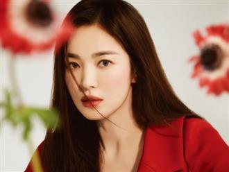 Gần 2 năm ly hôn, Song Hye Kyo gây chú ý khi so sánh hoa nhà không thơm bằng hoa dại