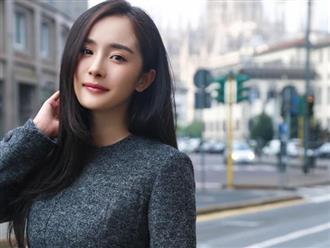 Hẹn hò trai trẻ chưa bao lâu, Dương Mịch lại vướng tin đồn mang thai