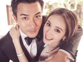 Dương Mịch có tình yêu mới, Lưu Khải Uy đang chuẩn bị tái hôn?
