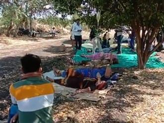 Người dân Ấn Độ sợ không dám đến bệnh viện, bác sĩ không bằng cấp truyền dịch điều trị COVID-19 ngay ở lề đường