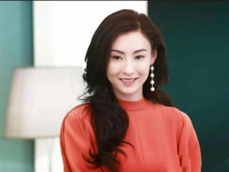 Trương Bá Chi là nguyên nhân khiến 4 lần cầu hôn của Tạ Đình Phong với Vương Phi thất bại?