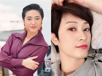 Bị đại gia lừa tình lẫn tiền, hoa hậu nổi tiếng Hong Kong sống cô độc tuổi xế chiều
