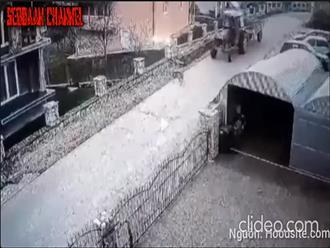 Phẫn nộ clip người đàn ông cố tình lái xe cán qua chú chó giữa đường, nhìn con vật lăn lộn trong đau đớn mà thương