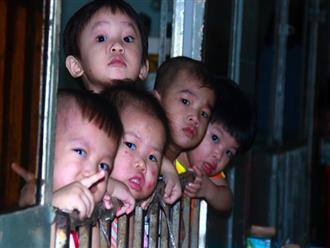 Ánh mắt cầu cứu của 232 đứa trẻ bị bố mẹ bỏ rơi, lớn lên từ vạt áo cà sa của người cha già nơi cửa Phật