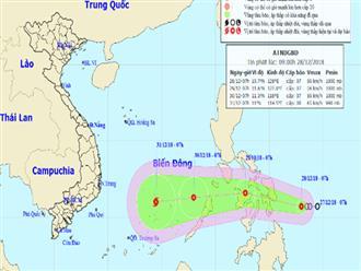 Áp thấp có thể mạnh lên thành bão, hướng vào Nam Bộ dịp Tết Dương lịch
