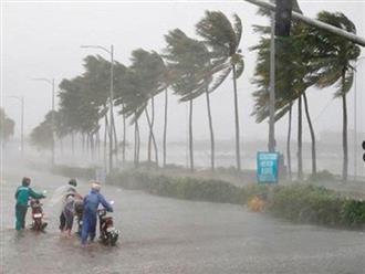 Bão số 5 giật cấp 11 tiến sát vùng biển các tỉnh Quảng Ngãi - Khánh Hòa, Trung Bộ mưa lớn trên diện rộng