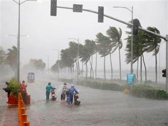 Bão số 6 giật cấp 15 quần thảo trên biển Đông trước khi đổ bộ đất liền Việt Nam trong 2 ngày tới