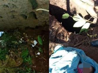 Bé gái 2 ngày tuổi bị mẹ trẻ bỏ xuống hố phân ở Kon Tum: Toàn thân dơ bẩn, kiến cắn khắp người khi được cứu