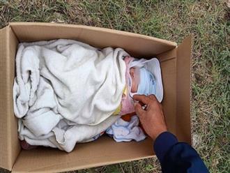 Bé gái bị mẹ bỏ rơi trước cửa nhà dân vào mùng 5 Tết: Sức khỏe yếu ớt