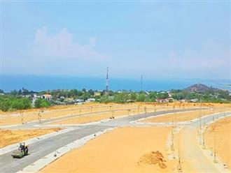 Bình Thuận yêu cầu dừng rao bán, chuyển nhượng nhiều dự án BĐS