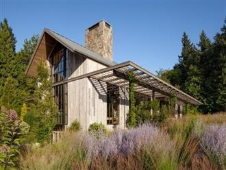Căn nhà khiến những người yêu thiên nhiên không rời mắt
