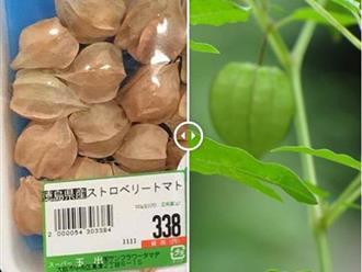"""Những thực phẩm rẻ như bèo ở Việt Nam, sang Nhật """"lột xác"""" thành cao lương mỹ vị"""