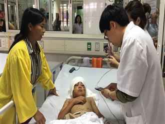 Bé trai 12 tuổi bị 2 con chó becgie gần 30kg cắn xé: Vùng vẫy kêu cứu 20 phút, khắp người là máu trộn bùn
