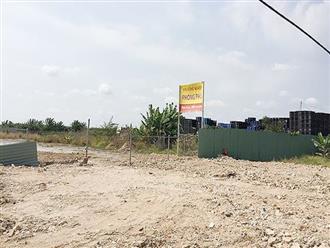 Chính thức thanh tra dự án khu công nghiệp Phong Phú