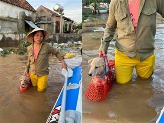 Chú chó được bà chủ xách theo không rời nửa bước giữa mênh mông nước lũ khiến dân mạng có một phen cười bò