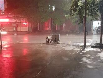 Hình ảnh cô lao công cặm cụi nhặt rác giữa trời mưa khiến nhiều người xúc động