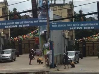 Phẫn nộ hình ảnh nam thanh niên nắm đầu, đạp bạn gái ngay giữa đường phố Sài Gòn
