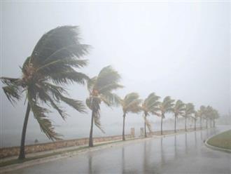 Dự báo thời tiết 15/11: Áp thấp trên Biển Đông