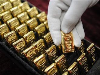 Giá vàng hôm nay 28/1: Tiếp tục vững ở mức cao