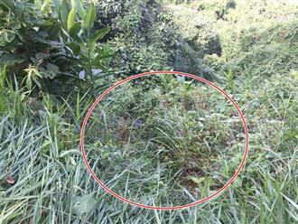 Giết người dùng bao ni lông quấn thi thể ném xuống vực sâu ở Bình Thuận: Hé lộ nguyên nhân ban đầu