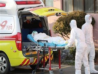 Hàn Quốc thêm 70 ca nhiễm mới, tổng số ca mắc bệnh tăng lên 833 người