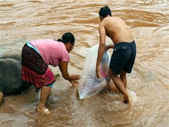 """Phó Chủ tịch tỉnh Điện Biên: Học sinh chui vào túi nylon để qua suối đến trường """"phản cảm quá"""""""