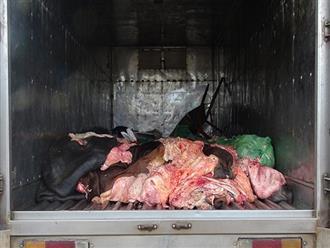 Hơn 1,4 tấn da, mỡ động vật bốc mùi trên xe tải bị tóm ở Bình Phước