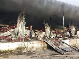 Kho chứa 260 tấn thanh long bốc cháy trong đêm