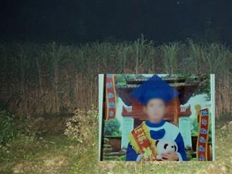 """Mẹ kế sát hại con riêng tại Tuyên Quang: """"Hành vi phạm tội thể hiện sự côn đồ, hung hãn"""""""